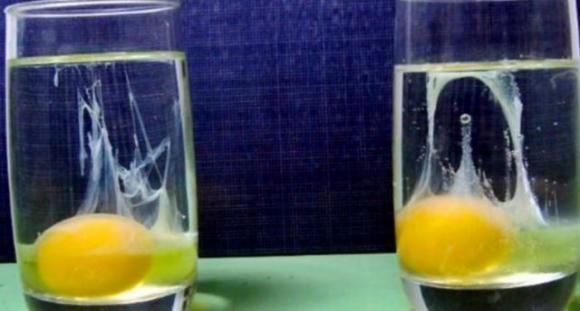 Photo of Energia negativa: Sicuramente avrete sentito parlare per togliersi il dubbio basta un uovo .