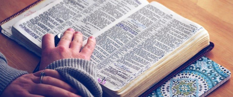 libro dei salmi