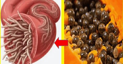 Photo of Papaya: Con i semi di papaya elimini i parassiti intestinali