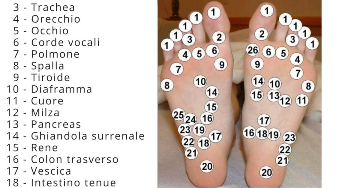 Photo of Massaggio: Ai piedi prima di andare a dormire può risolvere molti dei tuoi problemi!