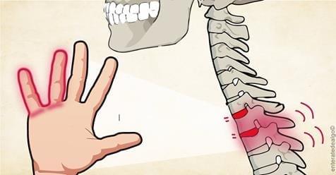 Photo of Mani: Intorpidimento delle mani è un allarme molto grave
