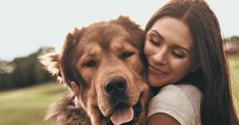 Photo of Cagnolini: Dormire con il proprio animale domestico aiuta molte donne