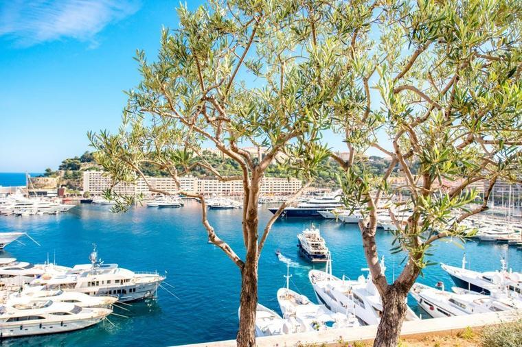 Photo of Monaco: Il terzo dei residenti è un milionario  è un vero paradiso!