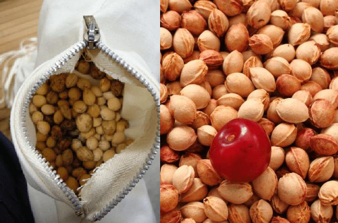 Photo of Cuscino con noccioli di ciliegia: Benessere per muscoli e cervicale.