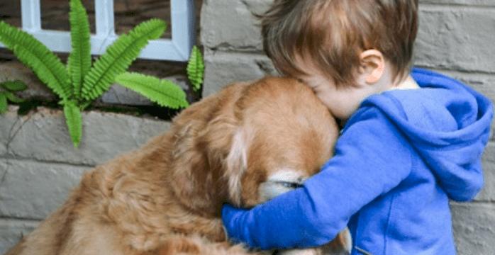 Photo of Cane: Perdere un animale domestico fa molto male
